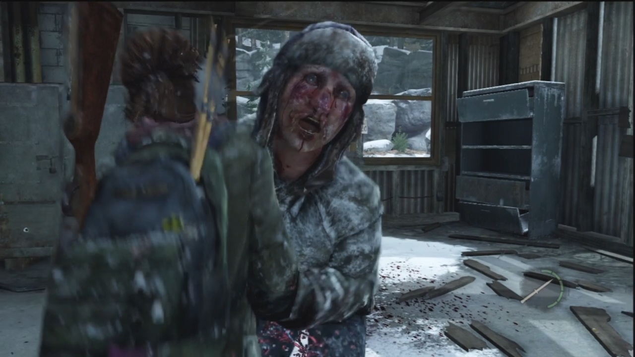 The Last of Us 33
